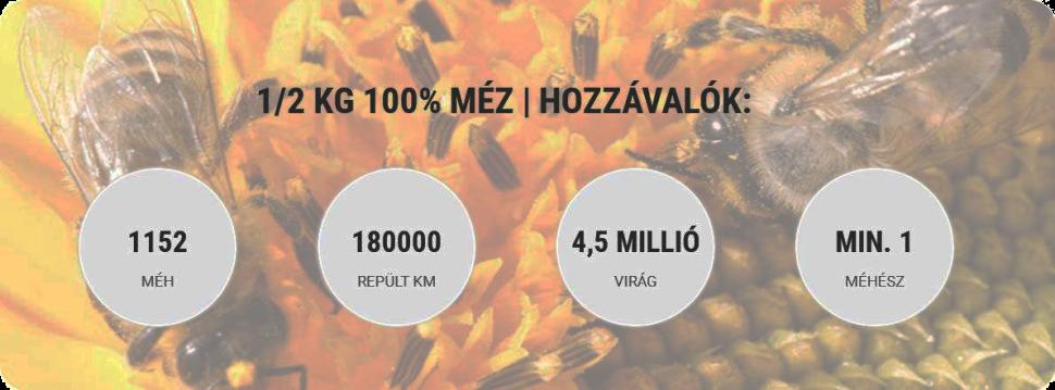 Bertalan Méz és Kaptár - BERTALAN MÉZ | Nektár a kaptárban - élet a mézben!