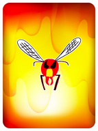 """Hot Shit"" Hornet"