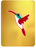Humble Hummingbird