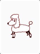 Polished Poodle
