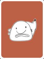 Bashful Blobfish