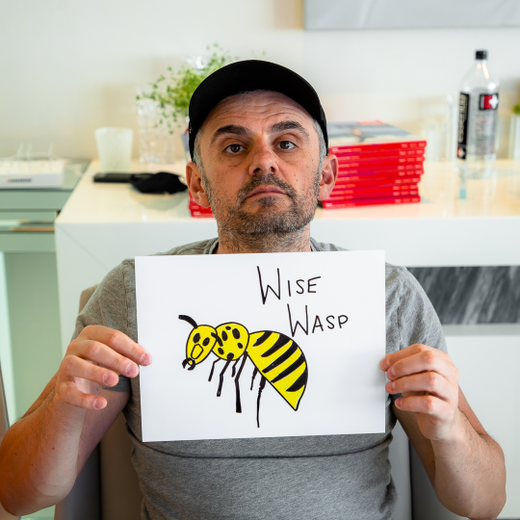 Wise Wasp