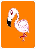 Forthright Flamingo