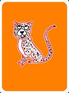Charming Cheetah