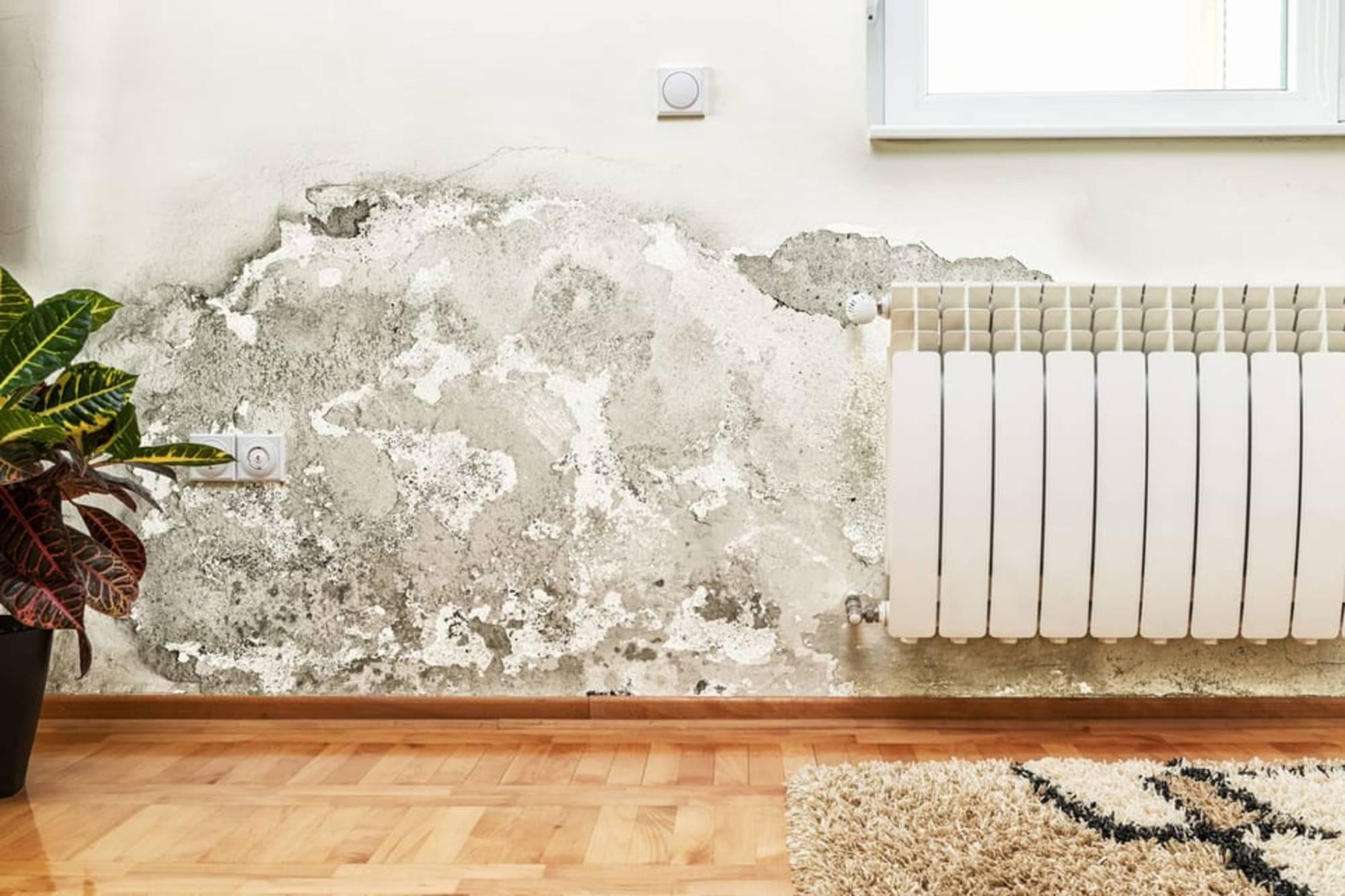 problème tache mur humidité
