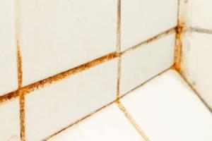 Comment nettoyer les joints noircis de votre carrelage?