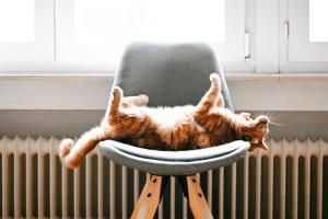 Dépannage chaudière: les causes les plus fréquentes