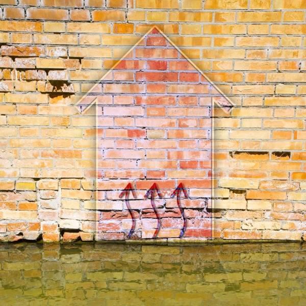 Diagnostics désordres et humidité dans les constructions