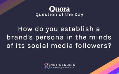 How do you establish a brand's persona in the minds of its social media followers?