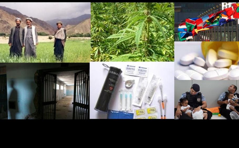Guida alla Politica sulla Droga dell'IDPC