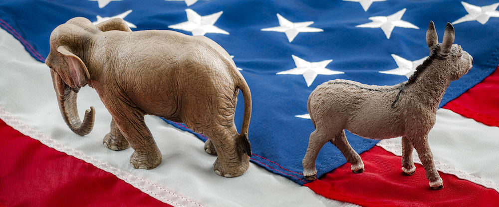 Donkey and Elephant on an american flag. Do the right and left agree on anything?