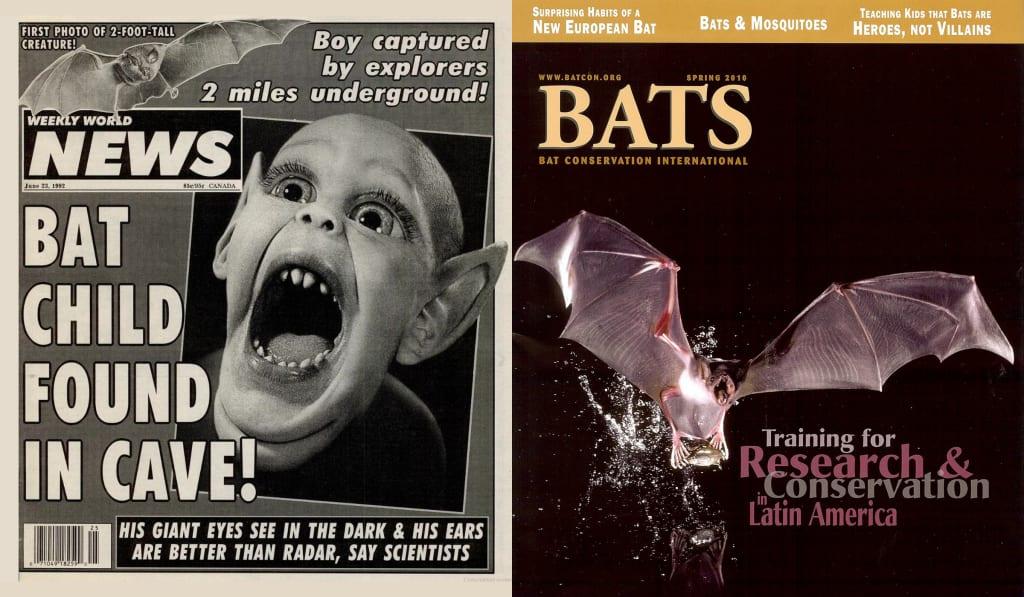 Fake news vs. real news. Batboy