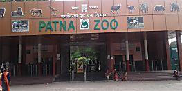 पटनावासियों के लिए खुशखबरी, खुल गया है पटना ZOO का गेट