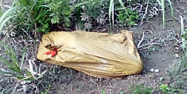 दहेज में नहीं मिला टीवी और सोने की चेन, बहू की हत्या कर शव को खेत में फेंका