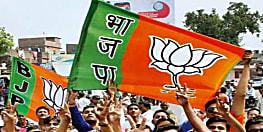 बिहार विधानसभा चुनाव से पहले BJP करने जा रही यह काम......फिर भाजपा के रणनीतिकार तय करेंगे आगे की रणनीति