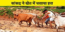 सांसद ने किसानों के साथ मिलकर खेत में चलाया हल, कहा जिनके काम को समझना है उनके बीच जाना होगा