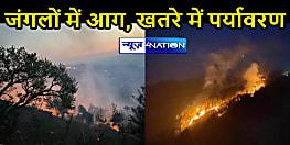 UTTARAKHAND NEWS: जंगलों में धधकती आग से खतरे में जनजीवन, केंद्र ने दिया मदद का भरोसा
