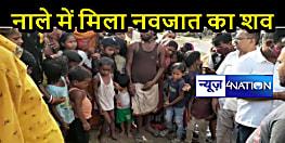 BIHAR NEWS: मानवता शर्मसार! नाले में मिला नवजात का शव, विचलित कर देंगी तस्वीरें
