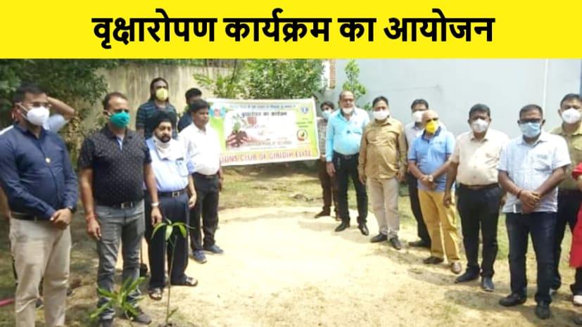 लायंस क्लब ऑफ गिरिडीह एलिट ने मनाया शिक्षक दिवस, वृक्षारोपण कार्यक्रम का हुआ आयोजन