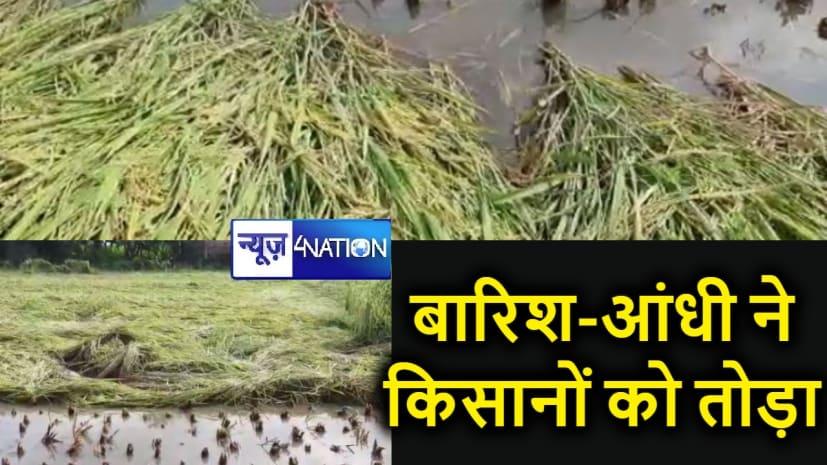 प्रकृति की दोहरी मार : पहले बाढ़ ने जमीन पर पटका, अब लगातार बारिश और आंधी से सारी फसल बर्बाद, किसानों के आंखों से निकल रहे हैं खून के आंसू