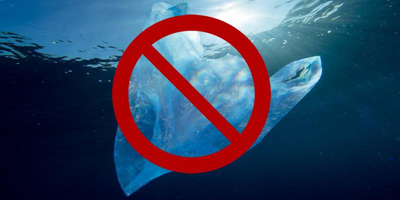 plastic-bag-ban-1_tj8bz4.jpg