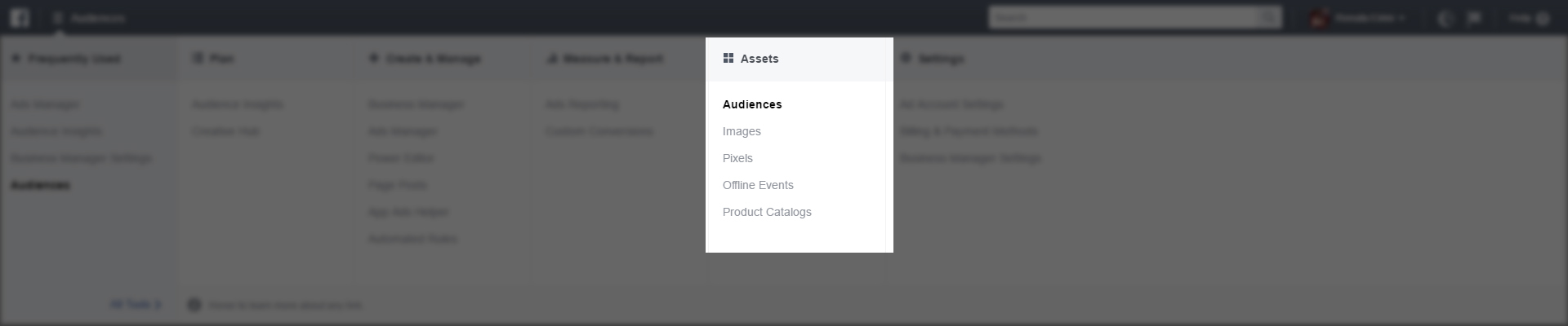 screencapture-facebook-ads-manager-audiences-manage-1-copy