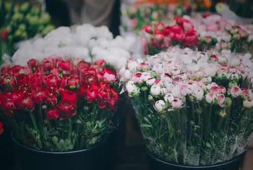 Back Florists
