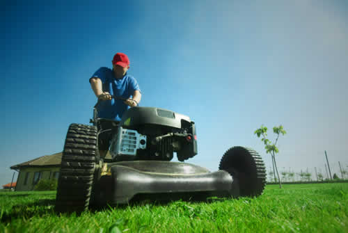 Back Lawn Maintenance