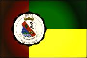 Bandera de Cidra, Guayama