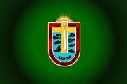 Bandera de Iquitos, Loreto