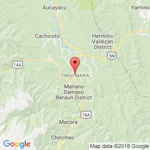 Localización de Tingo María en Huánuco