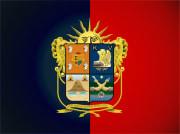 Bandera de Irapuato, Guanajuato