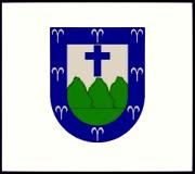 Bandera de Trujillo Alto, Carolina