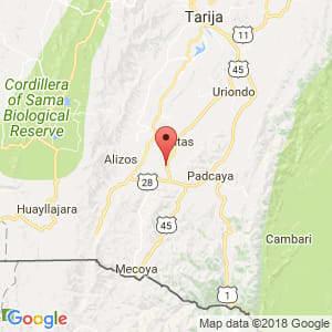 Localización de Chaguaya en Tarija