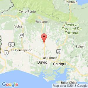 Localización de Dolega en Chiriquí