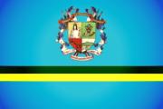 Bandera de Naguanagua, Carabobo