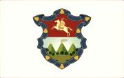 Bandera de Ciudad de Guatemala, Guatemala