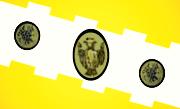 Bandera de Comayagua, Comayagua