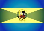 Bandera de Turmero, Aragua