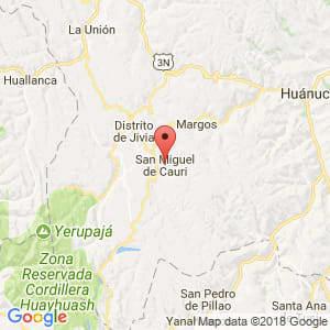 Localización de San Miguel de Cauri en Huánuco