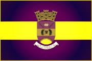 Bandera de Canóvanas, Carolina
