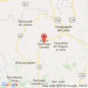 Localización de Santo Domingo Tonalá en Oaxaca