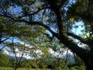 Foto 6 de Villavicencio, Meta