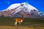 Foto 5 de Riobamba, Chimborazo