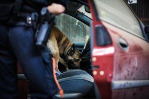 Illegal Search & Seizure Pennsylvania