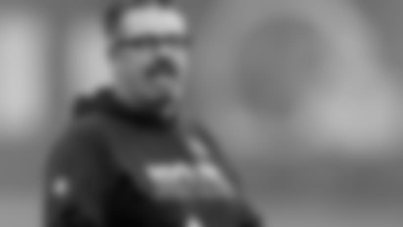 Browns DC Gregg Williams press conference - 6/15