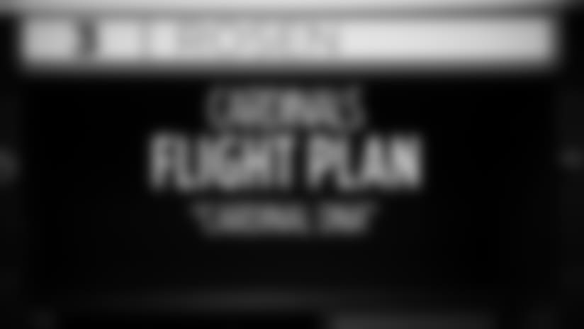 Flight Plan - 'Cardinal DNA'
