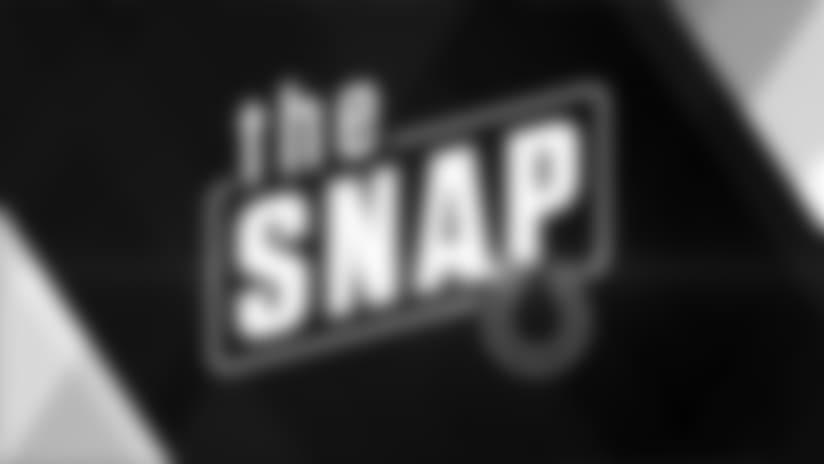 The Snap: 2017 Reviews - Outside Linebackers