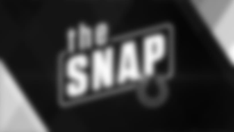The Snap: 2017 Reviews - Tight Ends
