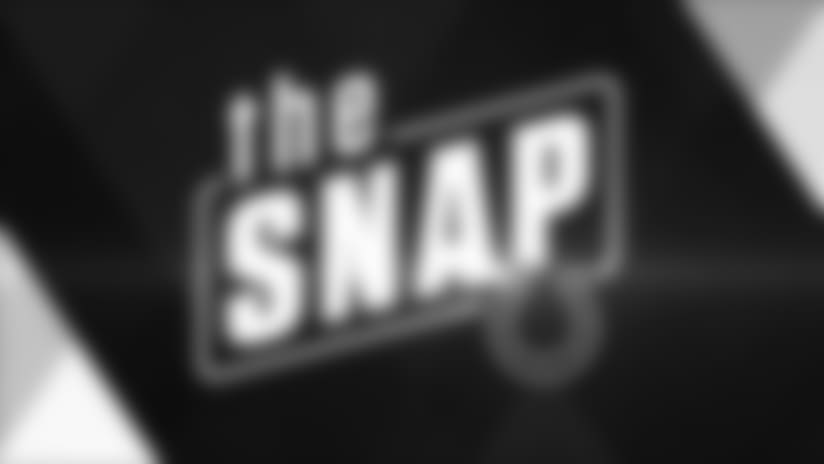 The Snap: 2017 Reviews - Wide Receivers